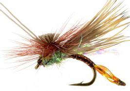AC Caddis, Pheasant Tail