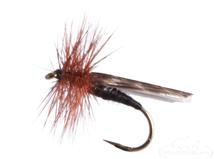Mottled Caddis, Black