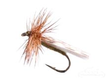 Mottled Caddis, Olive