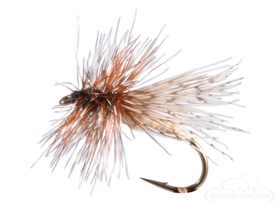 Partridge Caddis