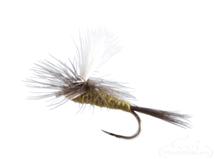 Parachute Blue Winged Olive