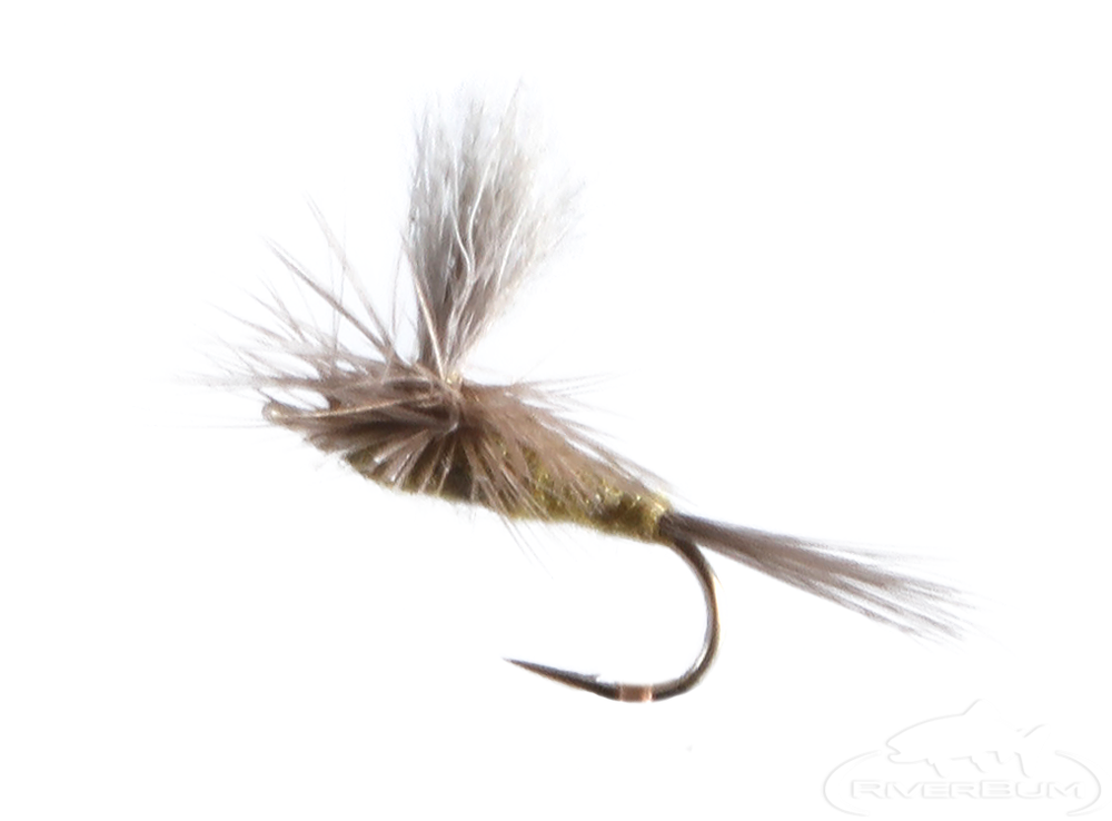 Blue Winged Olive, Parachute, Dun Post