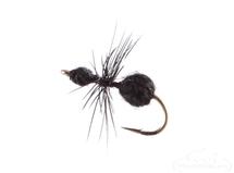 Ant, Fur, Black