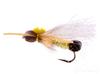 Golden Stonefly, Bullet Head, Adult