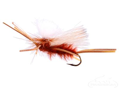 Flexi-Girdle Bug, Adult, Brown