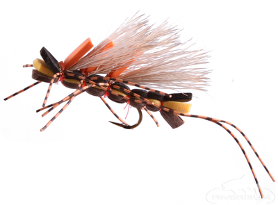 King Kong, Salmon Fly, Stonefly Adult