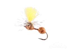 Ant, Parachute, Cinnamon