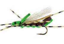 Clodhopper, Green