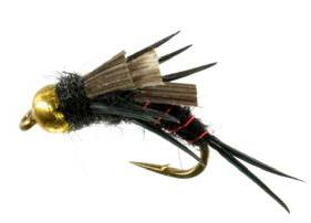Bead Head Norfolk Special, Black