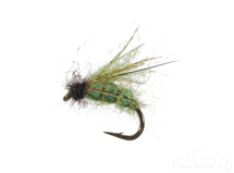 Pulsating Caddis, Olive