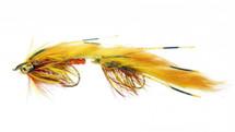 Candyman Bighorn