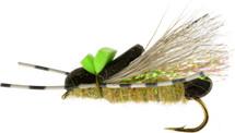 Skwala Stonefly