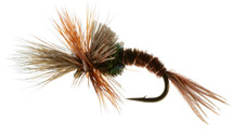 Challenged Mayfly Emerger