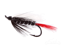 Skunk Salmon Fly