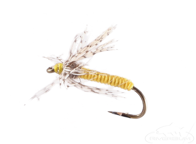 Soft Hackle, Partridge, Yellow
