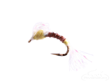 Humpback Emerger, PMD