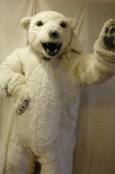 'Bundy' The Polar Bear Costume for Hire