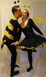 Hire Bee Costumes