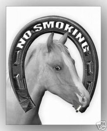 "No Smoking Horse Sign for Your Barn  8"" X 10"" Aluminum"