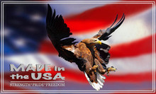 USA Flying Eagle Art Panel for Your Tool Box or Equipment Panel