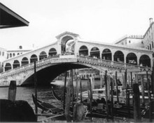 Rialto Bridge Fine Art Quality Print on Aluminum
