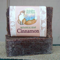 Cinnamon Botanical Soap