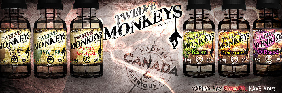 twelve-monkeys-header.jpg