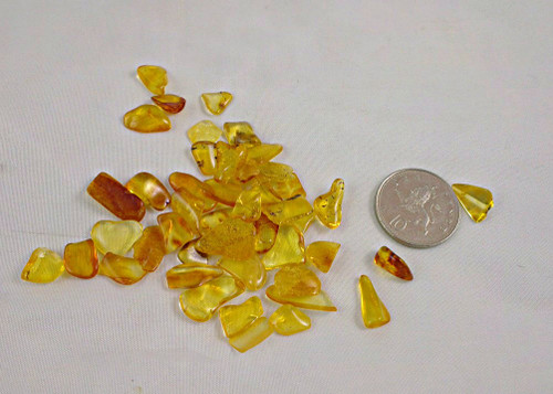 Amber - Tiny pieces (4)