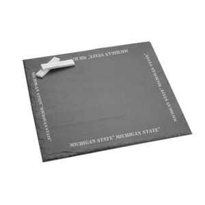 Michigan State Slate Server/Board