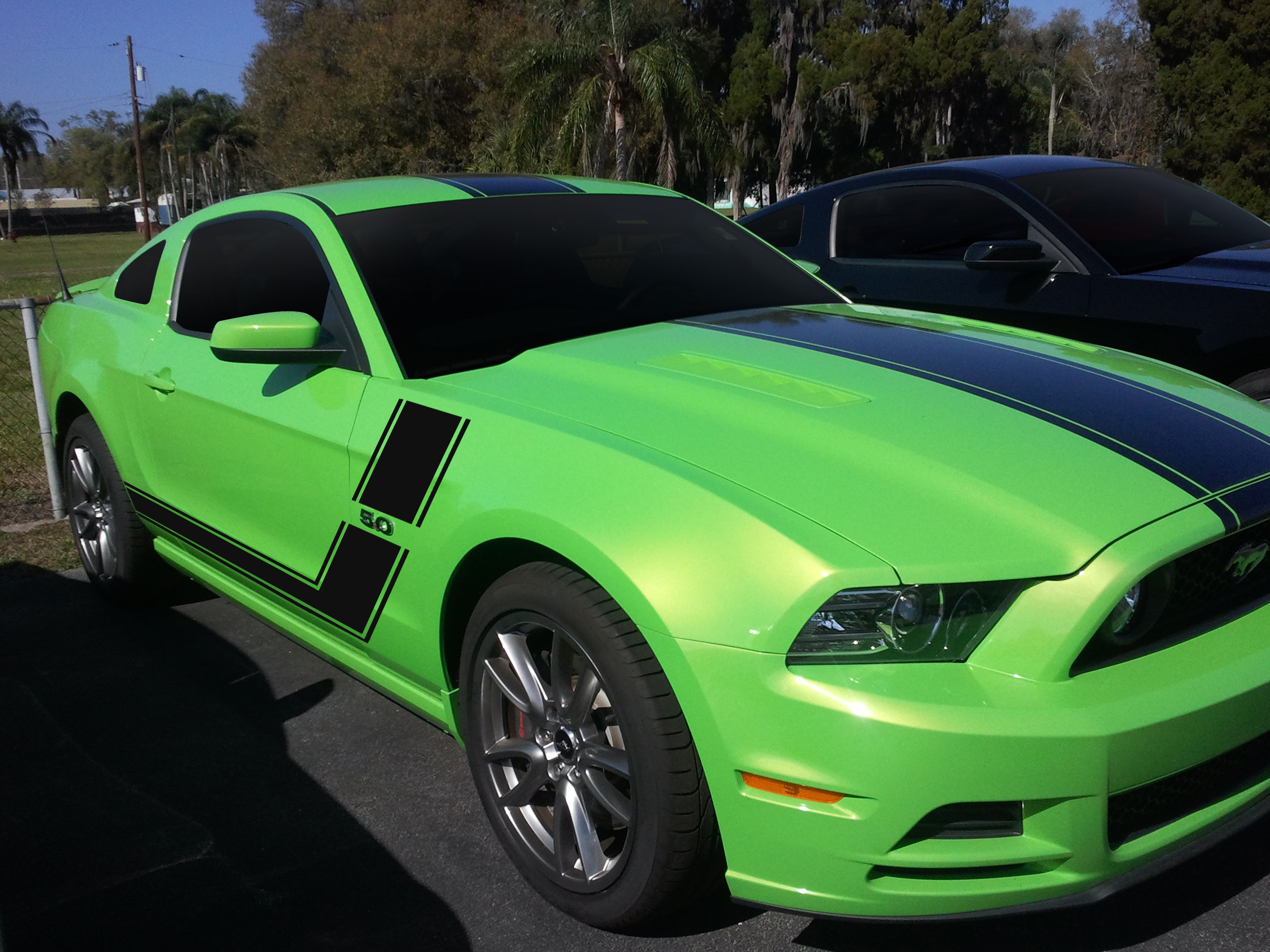 2013-mustang-black-carbon-stripes.jpg