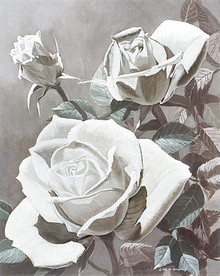 White Roses--M.Hornbuckle