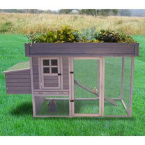 Precision Pet Products Precision Garden Hen House, Wood, 4