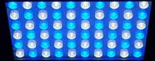 ECORAY 72DX HIGH PAR LED LIGHT