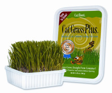 Gimborn Cat Grass Plus 5oz