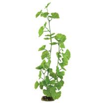 Aqueon Geranium Plant 16in