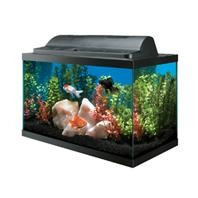 Aqueon Aquarium Economy Combo with 16in Hood Black 5.5gal
