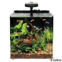 Aqueon AQE17102 Evolve Desk Top Aquariums Tank, 8-Gallon