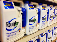 Pesticide Round Up: Glyphosate and Your Health