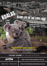 Koalas: Slow Life in the Fast Lane (ATOM study guide)