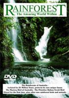 Rainforest: The Amazing World Within
