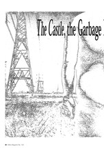 The Castle', the Garbage Bin and the High Voltage Tower: Home Truths in the Suburban Grotesque