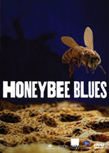 Honeybee Blues