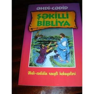 The New Testament Picture Bible in Azeri language / Azeri Latin Edition Pictu...