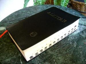 Alkitab Indonesian Bible