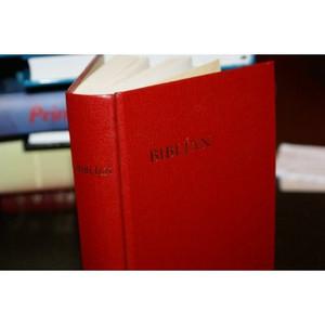 Reykjavk Biblian Heilog Ritning  / Gamla and Nyja Testamentid / Ny Utgafa / Iceland Bible