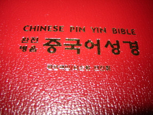 Chinese Pin Yin Bible / The Old Testament & New Testament / Chinese (Simplifi...