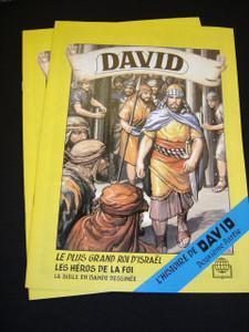 David II - L'histoire de David - Deuxieme Partie / King David 570P / French C...