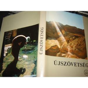 Hungarian Illustrated New Testament / Magyar Ujszovetseg Szines illusztraciokkal