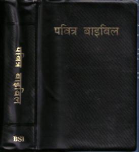 Hindi Bible: India [Paperback]