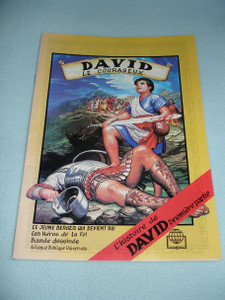 DAVID Le Courageux - David the Courageous / French Language Bible Comic Strip Book for Children